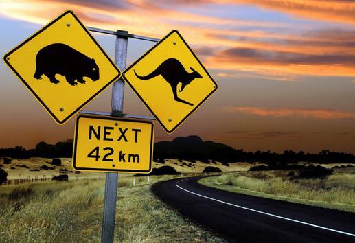 澳洲留学需要知道哪些交通常识,澳洲留学交通常识,留学生资讯,留学生作业代写,美国作业代写