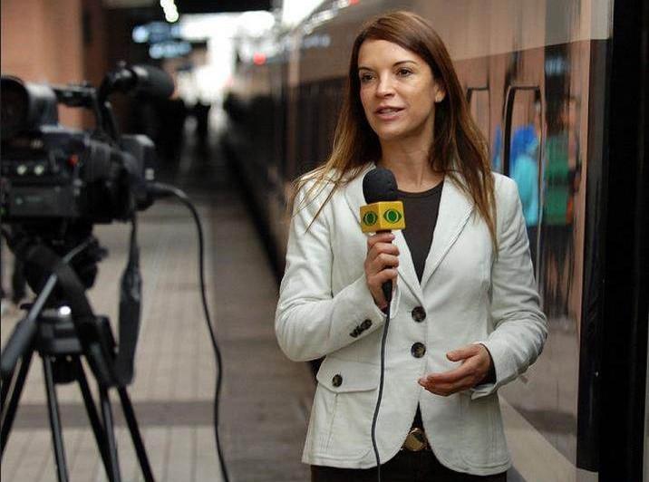 journalist,电视新闻记者,essay代写,paper代写,美国作业代写