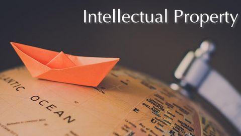 Abuse of intellectual property rights,知识产权滥用,essay代写,paper代写,美国作业代写