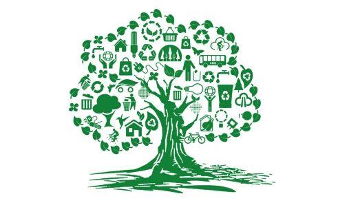 Ecological civilization theory,生态文明理论,essay代写,论文代写,代写