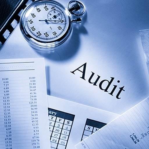 Audit importance,审计重要性,essay代写,paper代写,作业代写