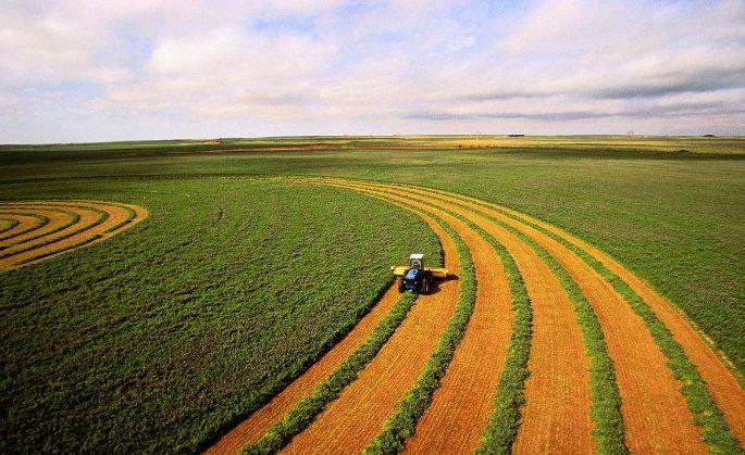American agriculture,美国农业,essay代写,作业代写,代写