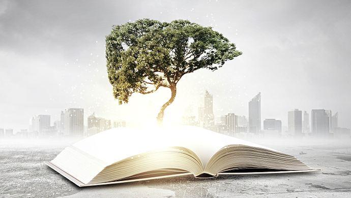 American ecological literature,美国生态文学,assignment代写,essay代写,美国作业代写