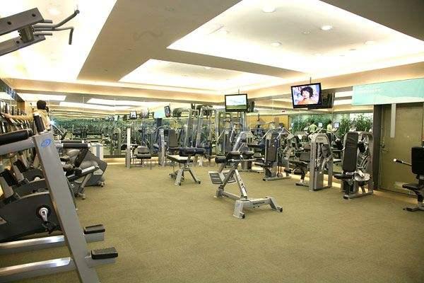 national fitness,美国全民健身,essay代写,作业代写,代写