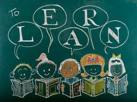bilingual education,双语教育,essay代写,作业代写,代写