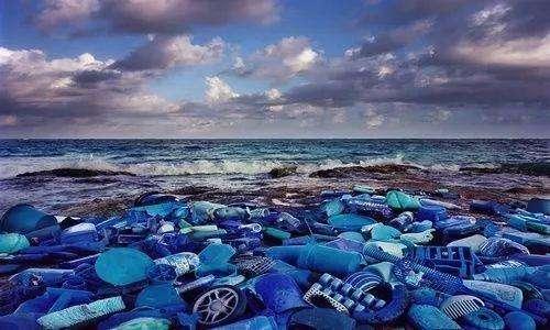 Avoid Marine Pollution,Over-Exploitation,essay代写,paper代写,作业代写