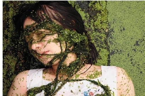 Ecofeminism,生态女性主义,essay代写,paper代写,作业代写