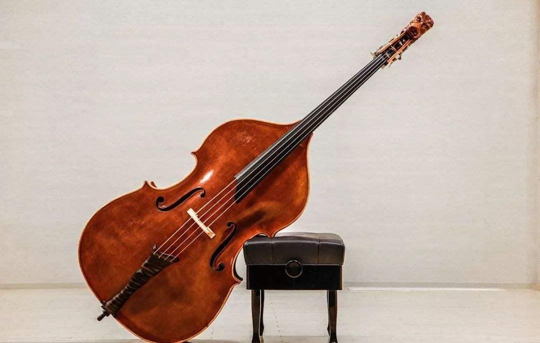 double bass,低音提琴,essay代写,paper代写,作业代写